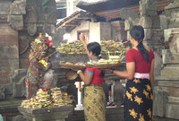 Women bringing food to the temple Bali