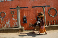 Woman, donkey walking by pay phones